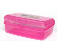 500ml STORAGE BOX & HINGED LID WITH CLIP